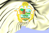 Flag of Manaus, Brazil. — Stock Photo