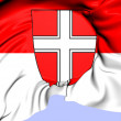 Stock Photo: Flag of Vienna