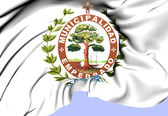 Corrientes Coat of Arms, Argentina. — Stock Photo