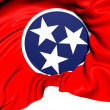 Flag of Tennessee, USA. — Stock Photo