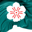 Flag of Saga Prefecture, Japan. — Stock Photo