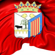 Flag of Salamanca City, Spain. — Foto Stock