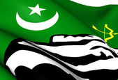 Flag of Hunza, Pakistan. — Stock Photo