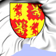 Carmarthenshire Coat of Arms, Wales. — Stock Photo