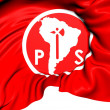 Socialist Party of Chile Flag — Stock Photo