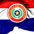 Stock Photo: Flag of Paraguay