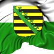 Stock Photo: Flag of Saxony, Germany.