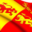 Sons of Glyndwr Flag — Stock Photo