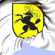 Schaffhausen Coat of Arms, Switzerland. — Stock Photo