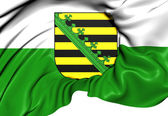 Flag of Saxony, Germany. — Stock Photo