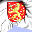 Finland Coat of Arms — Stock Photo #36845923