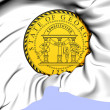 State Seal of Georgia, USA. — Stock Photo