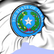 State Seal of Texas, USA.  — Stock Photo