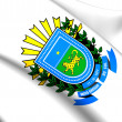 Mato Grosso do Sul Coat of Arms, Brazil. — Stock Photo