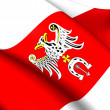 Stock Photo: Flag of Brzeziny County, Poland.