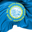 Stock Photo: Flag of South Dakota, USA.