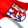 Flag of Dusseldorf, Germany. — Stock Photo #40554313