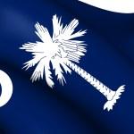 Flag of South Carolina, USA. — Stock Photo