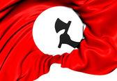 Sindhi Nationalists Flag — Stock Photo