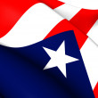Flag of Puerto Rico — Stock Photo #40939567