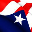Flag of Puerto Rico — Stock Photo #40939567
