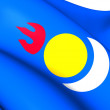 Inner MongoliPeople's Party Flag — Stock Photo #41190149
