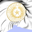 Lieutenant Governor of Texas Seal, USA.  — Stock Photo #41190275