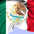 Flag of Mexico — Stock Photo #41446585