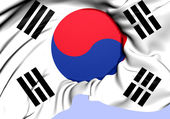 Flag of South Korea — Stock Photo