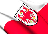 Flag of South Tyrol, Italy.  — Stock Photo
