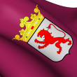 Flag of Leon Province, Spain. — Stock Photo