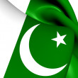 Flag of Pakistan — Stock Photo #43791591