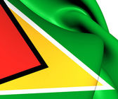Flag of Guyana — Stock Photo