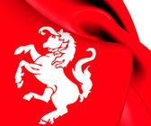 Flag of Twente, Netherlands.  — 图库照片