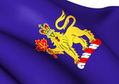 Governor-General of Canada Flag — Stock Photo