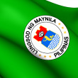 Flag of Manila, Philippines. — Stock Photo