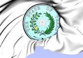 Unstandardized Seal of Texas, USA.  — Stock Photo
