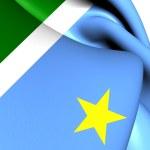 Flag of Mato Grosso do Sul, Brazil.  — Stock Photo #45114047