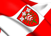 Flag of Halle, Germany.  — Stock Photo
