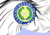 Texas Secretary of State Seal, USA.  — Stock Photo