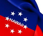 Governor of Hawaii Flag — Stock Photo