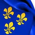 Flag of Wiesbaden, Germany. — Stock Photo #47647285