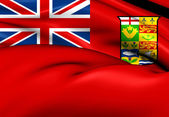 Canadian Red Ensign (1868-1921) — 图库照片