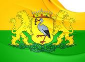 Флаг Гаага, Нидерланды. — Стоковое фото