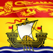 Flag of New Brunswick, Canada. — Stock Photo #48519541