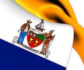 Flag of Albany, USA.  — Stock Photo
