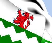 Flag of Westland, Netherlands.  — Stock Photo