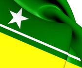 Flag of Boa Vista, Brazil. — Stock Photo