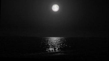 Měsíc nad mořem v noci. černá a bílá. — Stock video