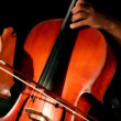 Expressive young woman  plays cello sitting on stage, close-up — Vídeo de stock
